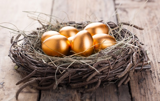 build golden egg nest through property investment in singapore